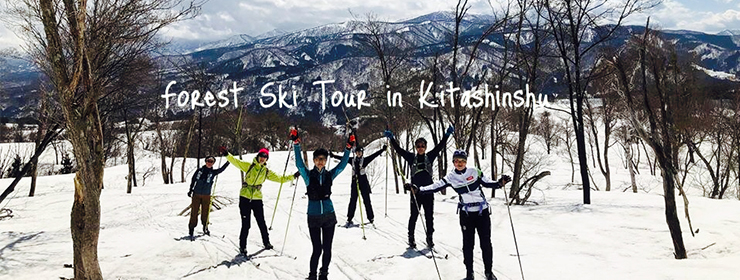 Forest Ski Tour in Kitashinshu